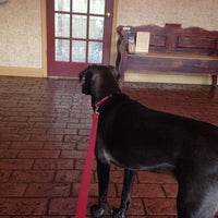 Photo taken at Lakeline Animal Clinic by Rachel S. on 2/14/2014