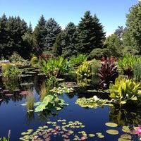 Photo taken at Denver Botanic Gardens by Mark M. on 9/7/2013