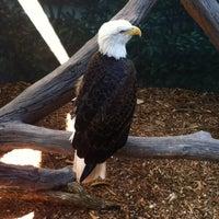 Photo taken at Houston Zoo by Jacob A. on 1/19/2013