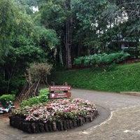 Photo taken at Doi Tung Lodge by PeNN ペ. on 11/13/2016