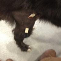 Photo taken at Veremedy Pet Hospital by Craig W. on 3/24/2012