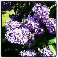 Photo taken at Highland Park Poet's Garden by Debi B. on 5/6/2012