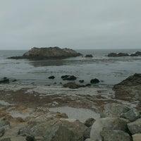 Photo taken at Bird Rock by Charles P. on 7/21/2014