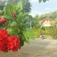Photo taken at Jardin Maria Clara Lobregat by Cedrick Z. on 9/4/2016
