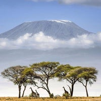 Photo taken at Mount Kilimanjaro by Adolfo R. on 4/15/2016