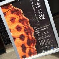 Photo taken at 東京大学 駒場博物館 by 零音 on 8/4/2014