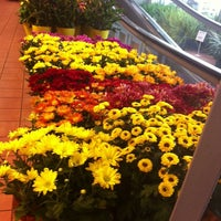 Photo taken at Real Canadian Superstore by Dahlia S. on 9/24/2013
