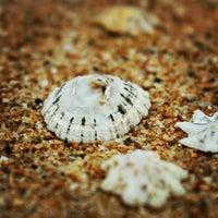 Photo taken at Newport Beach by Adam F. on 12/20/2012