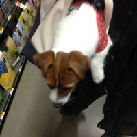 Photo taken at Unleashed by Petco by Michelle C. on 3/23/2013