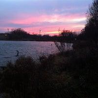 Photo taken at Delavan Memorial Arboretum by Michael G. on 11/22/2012