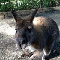 Photo taken at John Ball Zoo by Cody S. on 6/28/2013