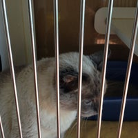 Photo taken at Door County Humane Society by Kymme G. on 9/28/2014