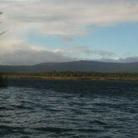 Rspb Loch Garten Osprey Reserve