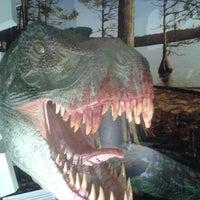 Снимок сделан в Вятский палеонтологический музей пользователем Наталья С. 5/18/2013
