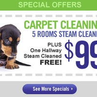 Teasdale Fenton Carpet Cleaning & Restoration - 12145 ...