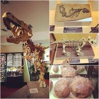 Снимок сделан в Вятский палеонтологический музей пользователем Marina A. 8/7/2013