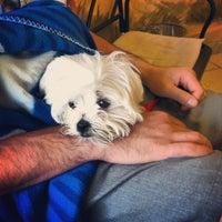 Photo taken at Shane Veterinary by Jenna A. on 4/28/2013