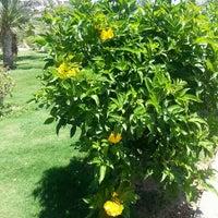 Photo taken at Fort Arabesque Resort & Spa by Olga B. on 5/15/2015