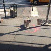 Photo taken at Starbucks by nina c on 10/4/2013