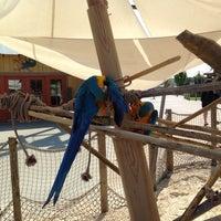 Photo taken at Zoombezi Bay Waterpark by Jason W. on 8/31/2013
