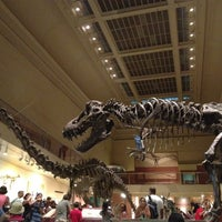 Photo taken at National Museum of Natural History by Olya on 7/8/2013