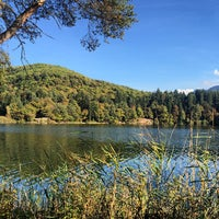 Photo taken at Großer Montiggler See / Lago Grande di Monticolo by Klaus M. on 10/22/2014