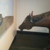 Photo taken at Museo  Nacional de Bellas Artes by Exequiel M. on 8/1/2012