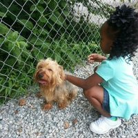 Photo taken at Guilford County Animal Shelter by Yolanda J. on 6/25/2015