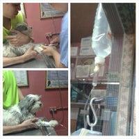 Photo taken at Animal Shelter Vet Clinic by Kim C. on 12/25/2013