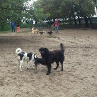 Photo taken at Hundeauslauf Mauerpark by Claudia S. on 9/18/2013
