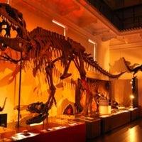 Photo taken at Australian Museum by Gabriel G. on 9/9/2013