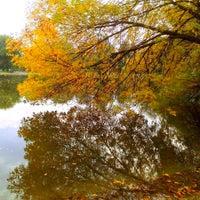 Photo taken at City Park by Dejan J. on 10/10/2013