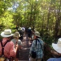 Photo taken at Bird Rookery Swamp by Linda J. on 3/3/2014