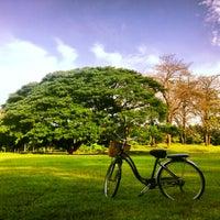 รูปภาพถ่ายที่ Vachirabenjatas Park (Rot Fai Park) โดย Adventure G. เมื่อ 6/2/2013