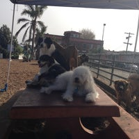 Photo taken at Westminster Dog Park by Agata on 10/29/2012