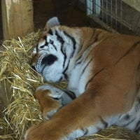Photo taken at Noah's Ark Zoo Farm by Kirsty G. on 9/14/2013