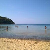 Photo taken at Spiaggia di Lacona by Andrea on 6/8/2015