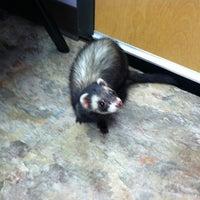 Photo taken at Duke Animal Hospital by Diana F. on 2/2/2013