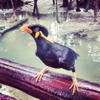 Photo taken at Zoo Taiping & Night Safari by Ajim A. on 3/10/2013