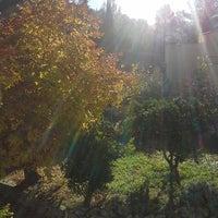 Photo taken at Atzeneta d'Albaida by Noé A. on 12/7/2013