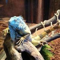 Photo taken at Winking Lizard Tavern by Jeremy E. on 12/23/2012