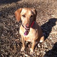 Photo taken at Columbia Dog Park by Jenny L. on 3/24/2012