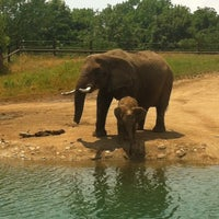 Photo taken at Indianapolis Zoo by Nick R. on 6/16/2012