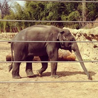 Photo taken at Smithsonian National Zoological Park by Devin G. on 3/3/2013
