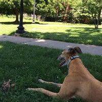 Photo taken at Kalorama Recreation Center & Park by Chris D. on 6/20/2014