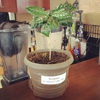 Photo taken at Atlantis Coffee by Dan S. on 8/17/2013