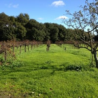 Photo taken at Madonna Estate Winery by Crystal R. on 12/24/2012