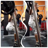 Body Evolution Fitness