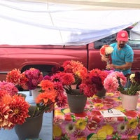 Photo taken at Healdsburg Farmers' Market by Marie on 6/7/2014