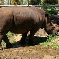 Photo taken at Maharani Zoo & Goa Lamongan by Immawan N.S. A. on 5/4/2016
